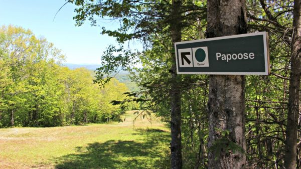 Papoose Ski Slope Hike