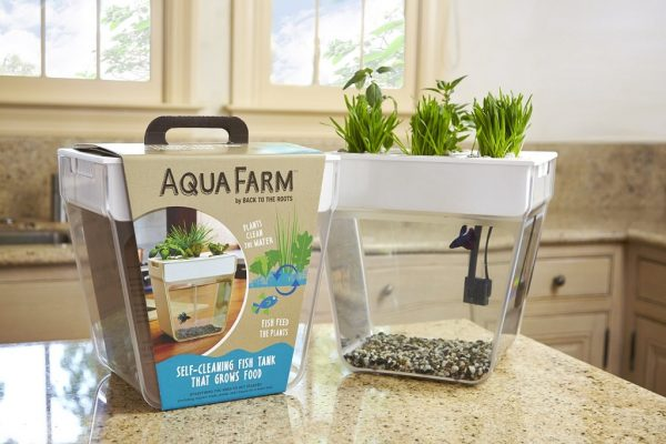 Betta fish aqua farm grow your own plants for How to keep fish tank clean without changing water
