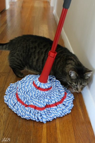 O-CEDAR Mop Cleaning Pet Hair