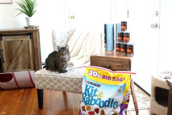 Turbo and Purina Cat Food